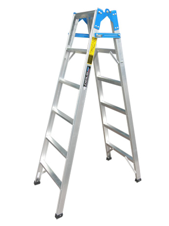 10 STEP DP-05 DUAL PURPOSE LADDER (100)